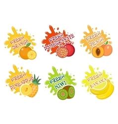 Fruits splash set of labels Fruit splashes drops vector image vector image