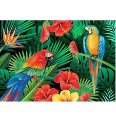 parrots with tropical plants vector image vector image