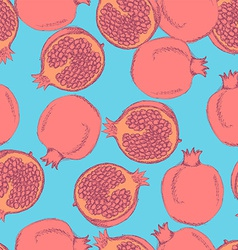 Sketch tasty pomegranates in vintage style vector image vector image