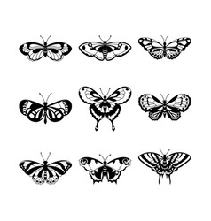 Set of black butterfly silhouettes vector