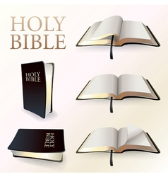 Set of Holy Bibles vector image
