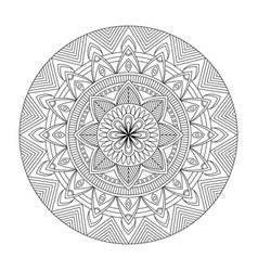 floral mandala vector image vector image