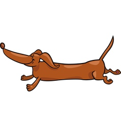 Running dachshund dog cartoon vector