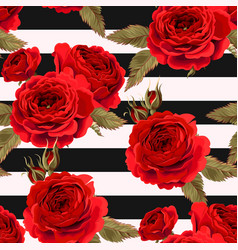 seamless pattern with roses ground vector image vector image