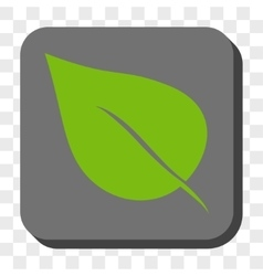 Plant leaf rounded square button vector