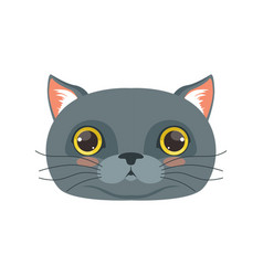 Cute british cat head funny cartoon animal vector