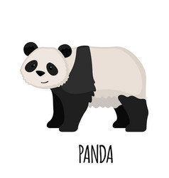 Cute panda in flat style vector