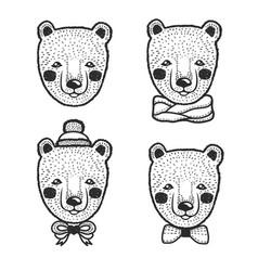 hand drawn cartoon bear head prints set vector image