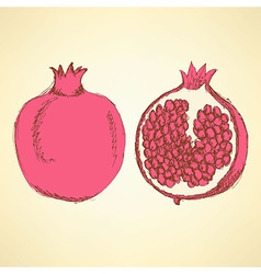 Sketch tasty pomegranates in vintage style vector