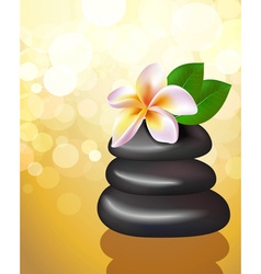 Golden spa of hot stones vector