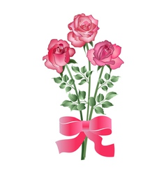 Bouquet of three roses vector