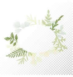Ellipse floral frame leaves decoration vector