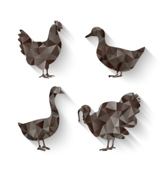 domestic fowl symbol vector image