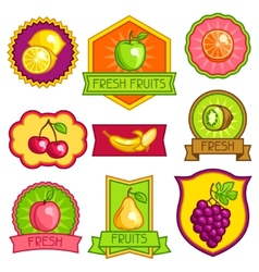 Set of badges and labels with stylized fresh ripe vector
