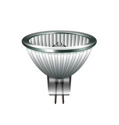 halogen light bulb isolated on white vector image vector image