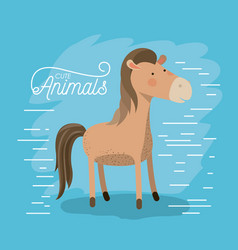 Horse animal caricature in color background with vector