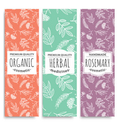 Herbal vertical banners with organic herbal vector
