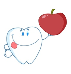 Dental Tooth Character Holding A Red Apple vector image