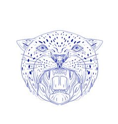angry jaguar head drawing vector image vector image