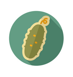 cucumber flat icon vegetable vector image vector image