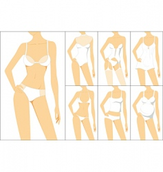 female underwear vector image