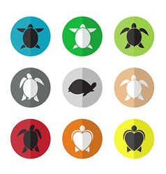 Group of turtle in the circle vector