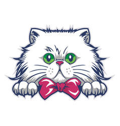 Funny cat mascot cartoon vector