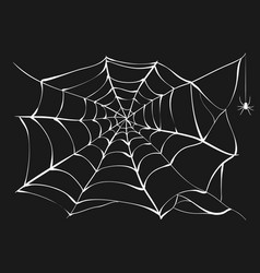 white cobweb and spider on black background vector image vector image