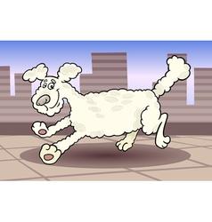 running poodle dog cartoon vector image