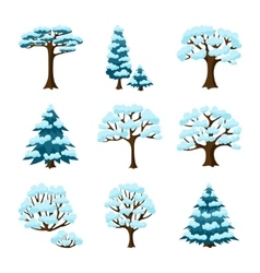 Set of winter abstract stylized trees Natural vector image
