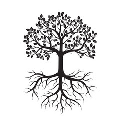 black tree with leafs and roots vector image