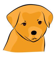Golden retriever puppy vector