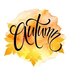 Word AUTUMN and three leaves Watercolor vector image vector image