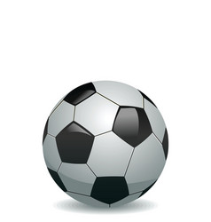 Illustration of soccer ball vector