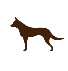 Sheppard dog silhouette vector image