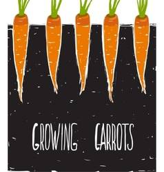 Growing carrots freehand drawing and lettering vector
