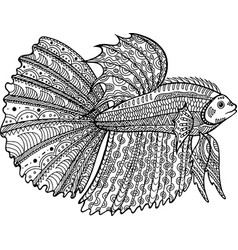 betta fish hand drawn coloring page vector image vector image