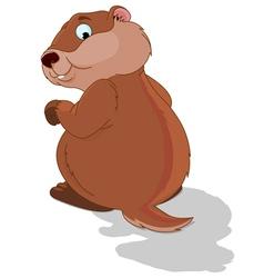 Groundhog vector image vector image