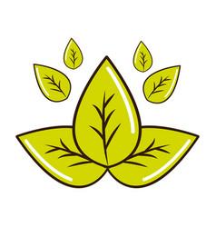 Green leaves eco health food vector