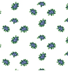 Blueberry pattern vector