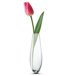 Tulip vase vector image