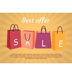 Sale Conceptual Flat Style Web Banner vector image vector image