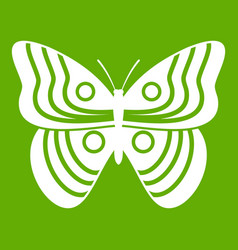 Stripped butterfly icon green vector