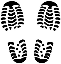 foot prints vector image vector image