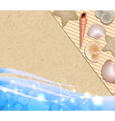 Beach with seashells vector