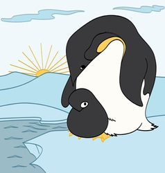 Mother and Baby Penguins vector image