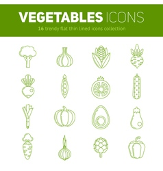 Trendy set of stylish thin line flat vegetable ico vector