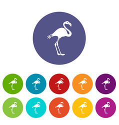 flamingo set icons vector image