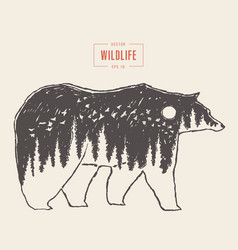 silhouette wild bear forest wildlife drawn vector image vector image