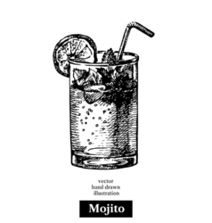 Hand drawn sketch cocktail mojito vintage isolated vector